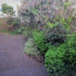 3844 garden